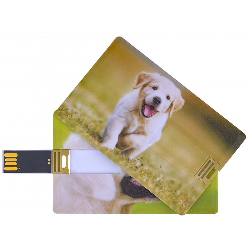 Флешка Собака пластиковая карта